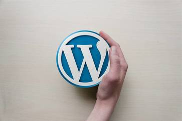 WordPress Themes & Plugins